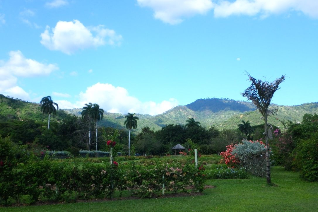 Kingston Jamaica Hope Gardens